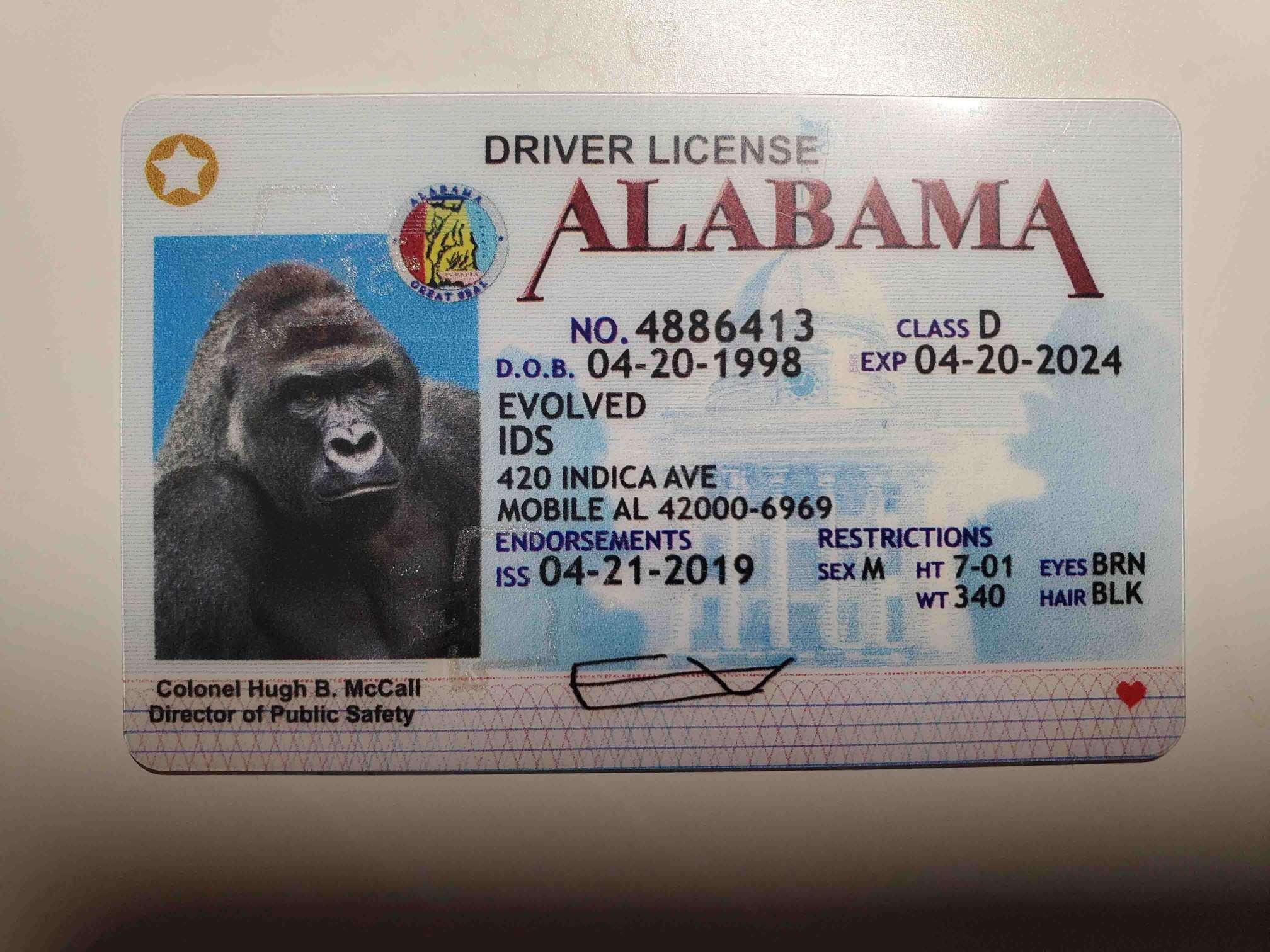 Alabama Fake ID Front