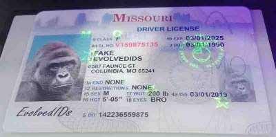 Missouri Fake ID UV