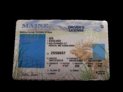Maine Fake ID UV