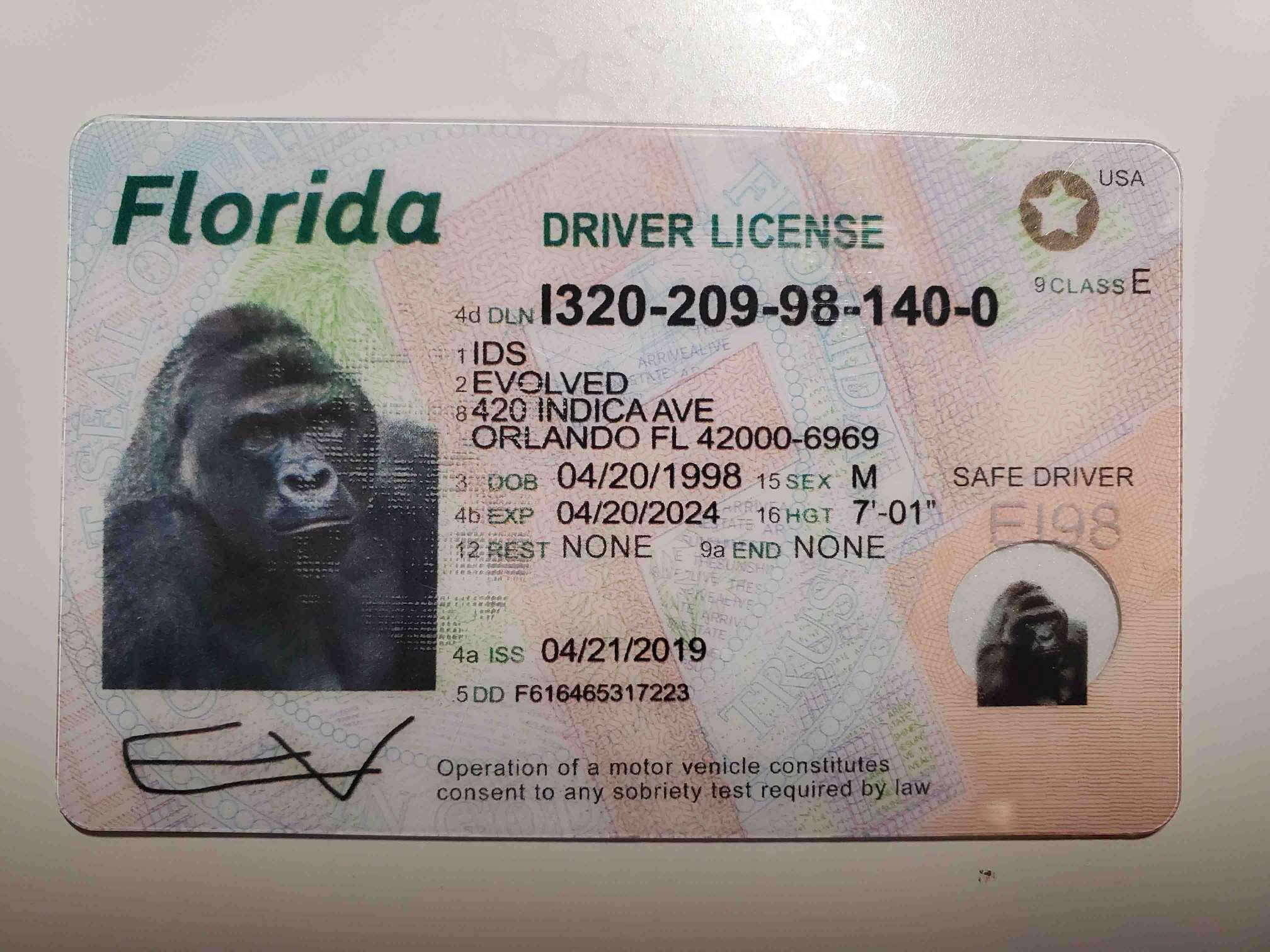Florida Fake ID Front