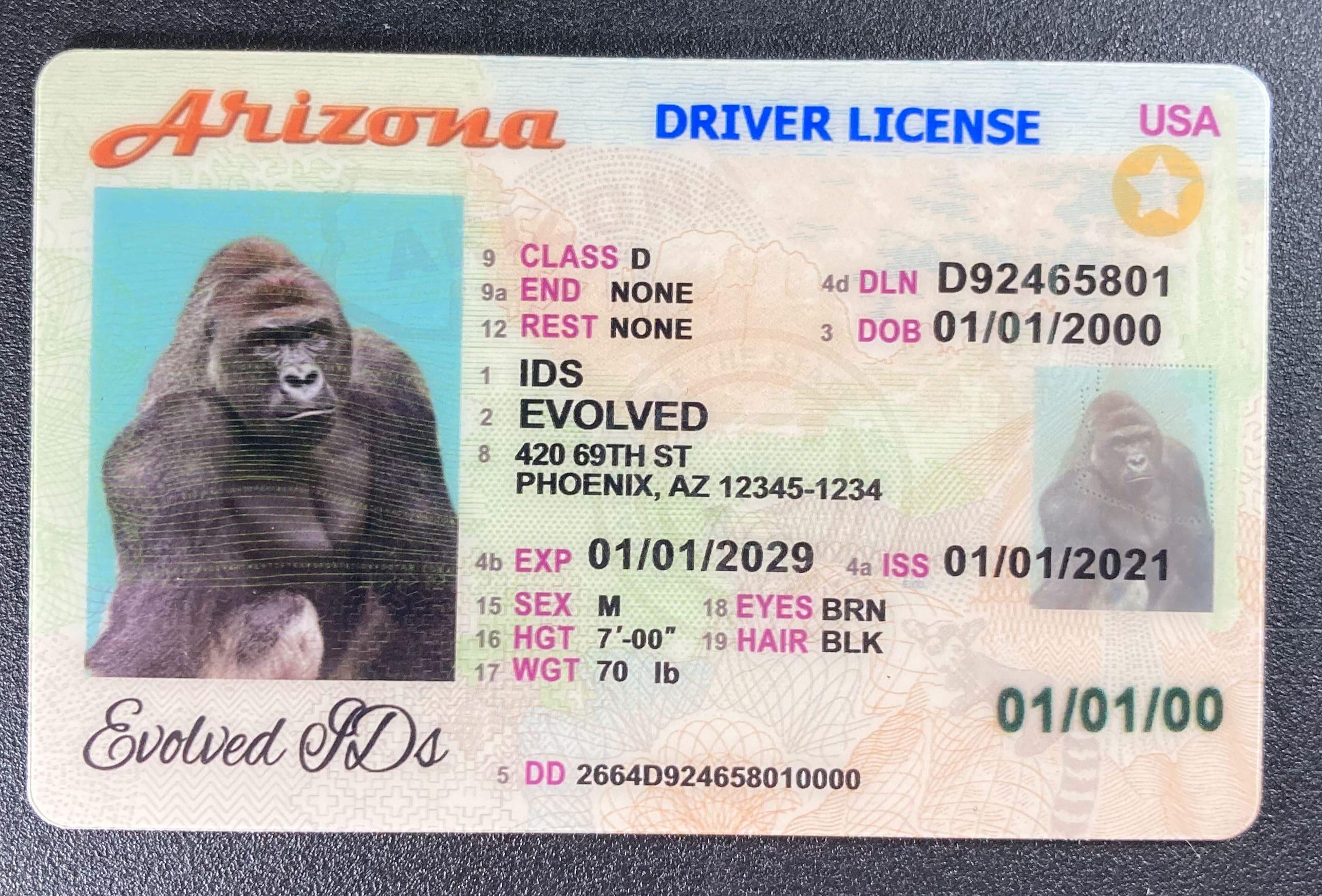 Arizona Fake ID