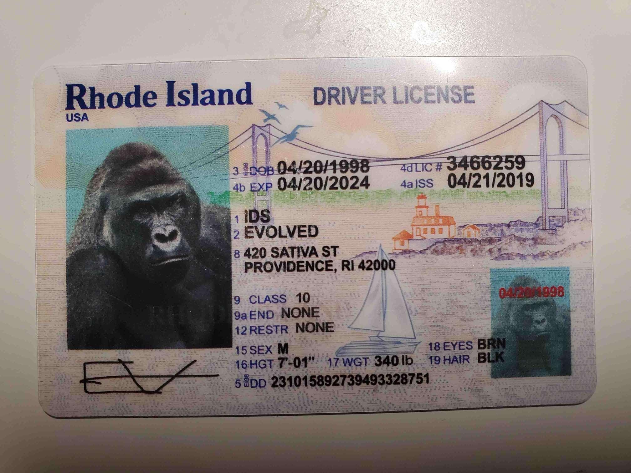 Rhode Island (New Version) Fake ID Front
