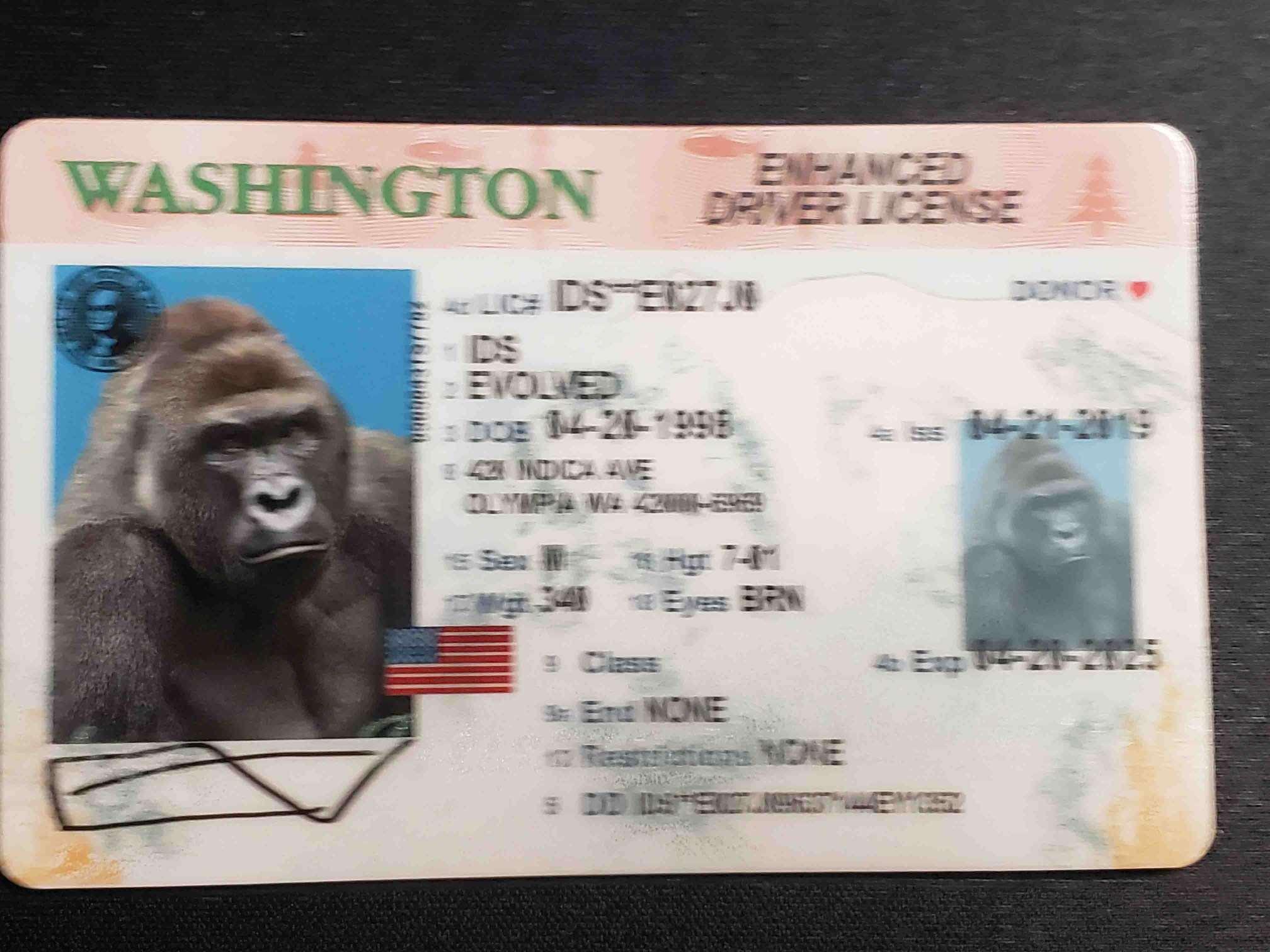 Washington EDL Fake ID Front