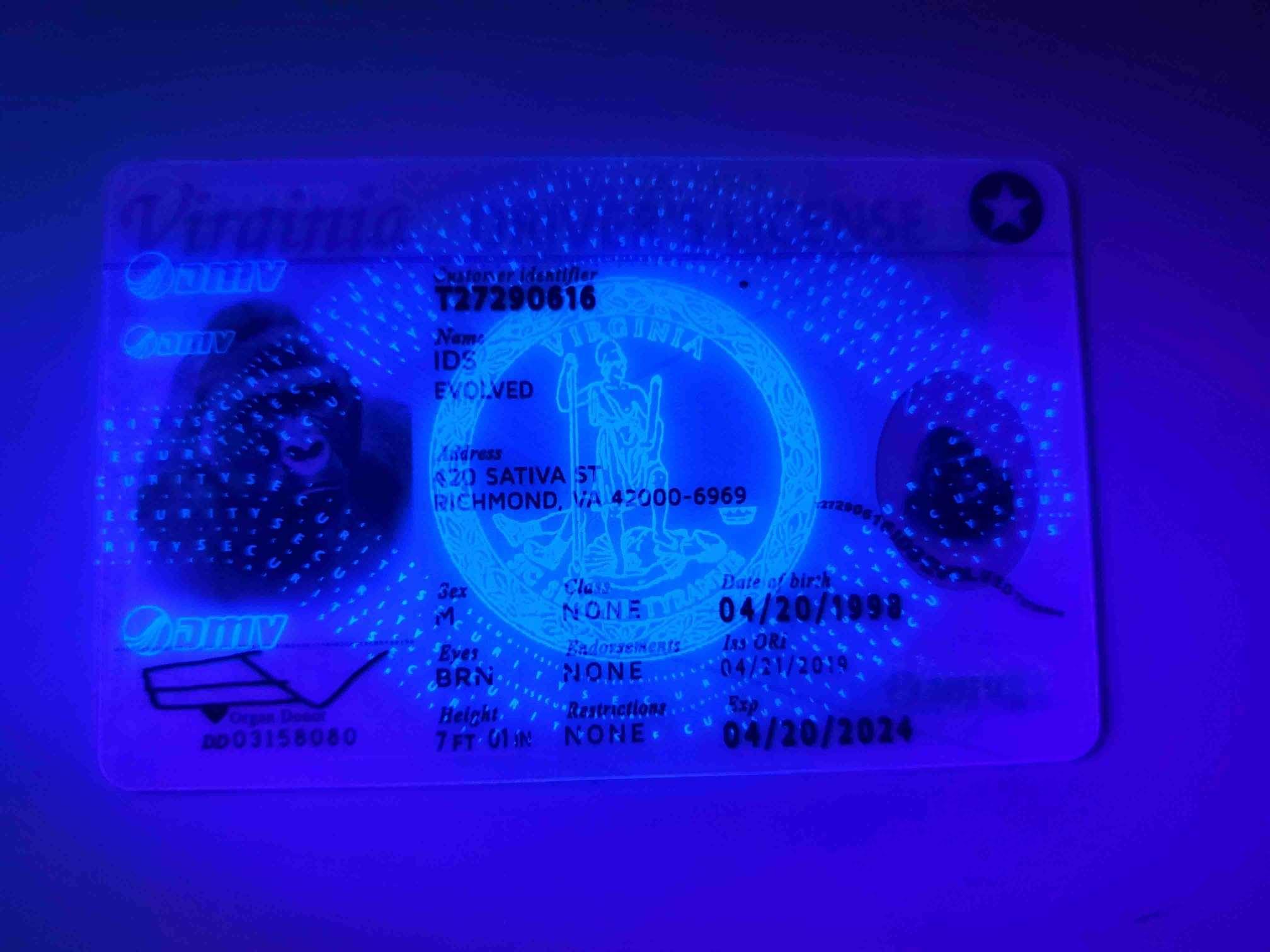 Virginia Fake ID UV