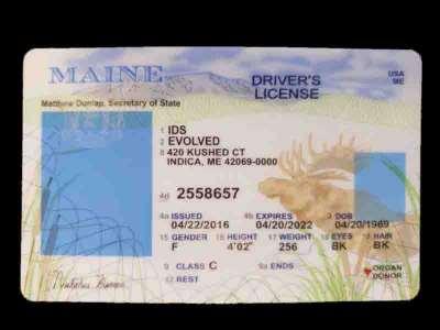 Maine Fake ID