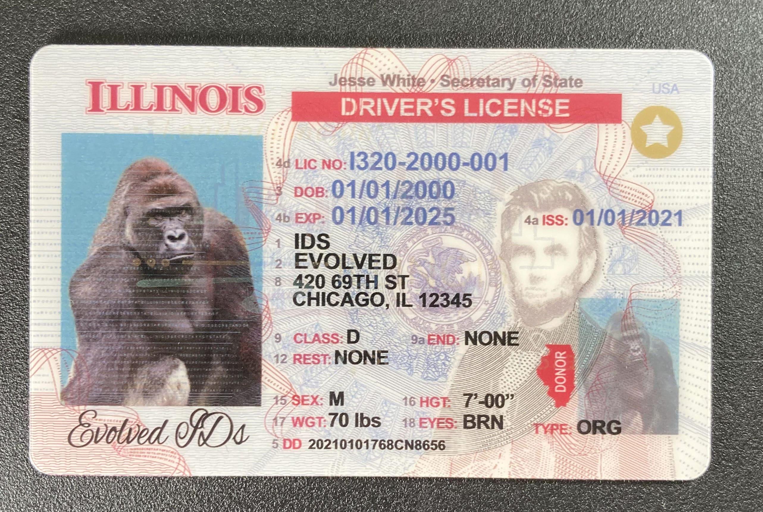 Illinois Fake ID Front