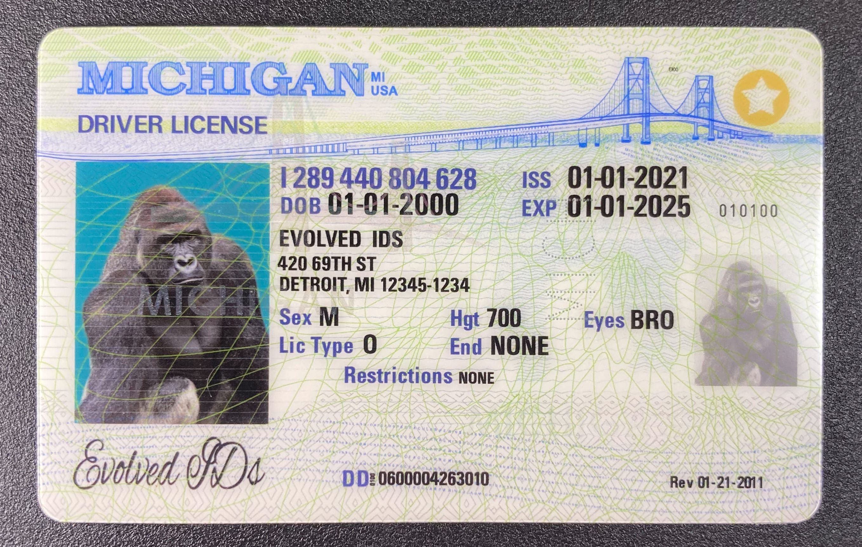 Michigan Fake ID Front