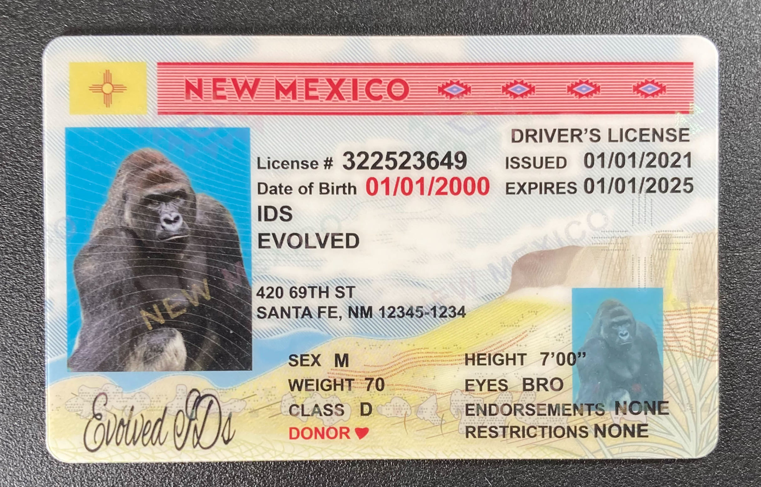 New Mexico Fake ID