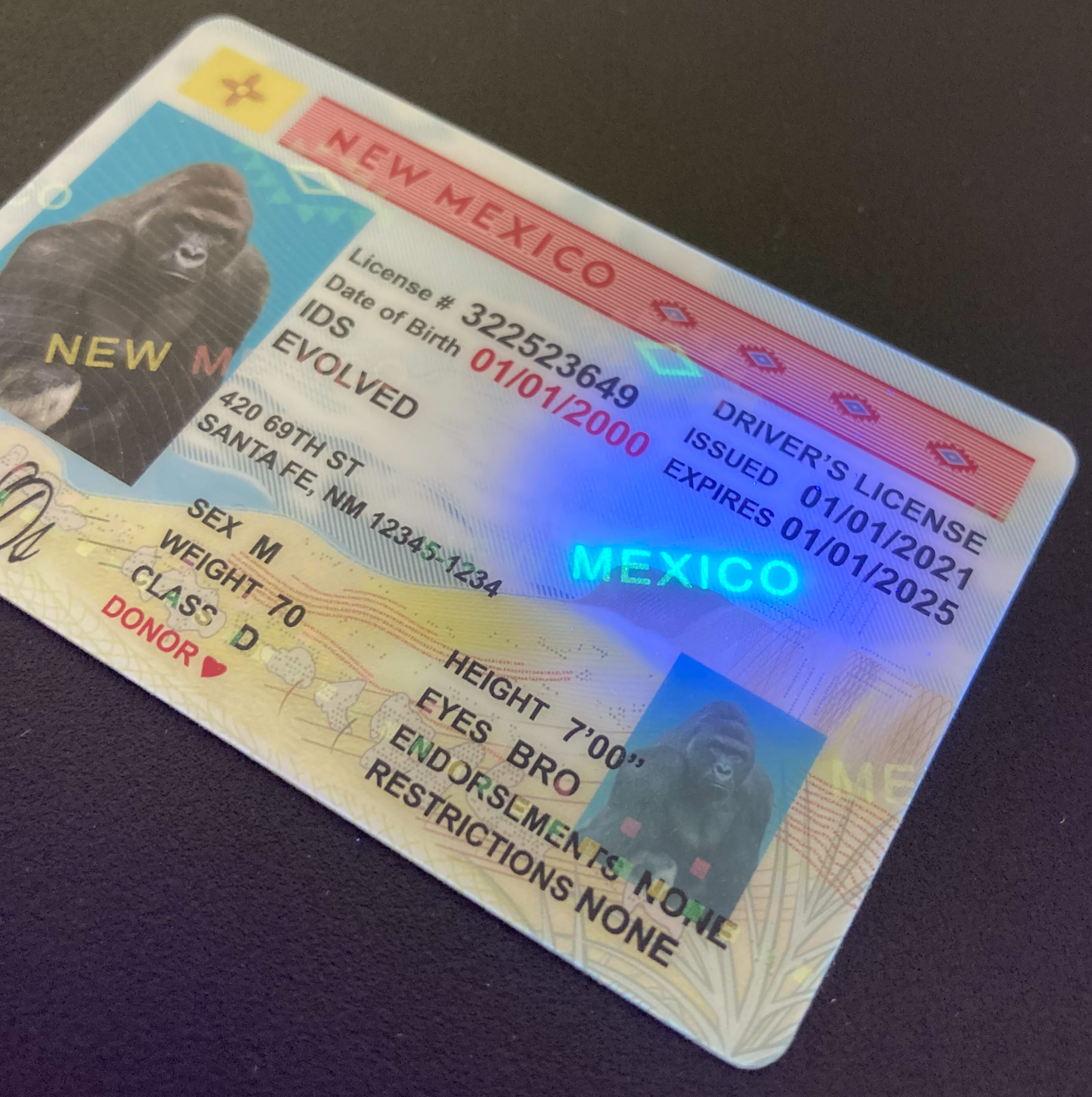 New Mexico Fake ID UV