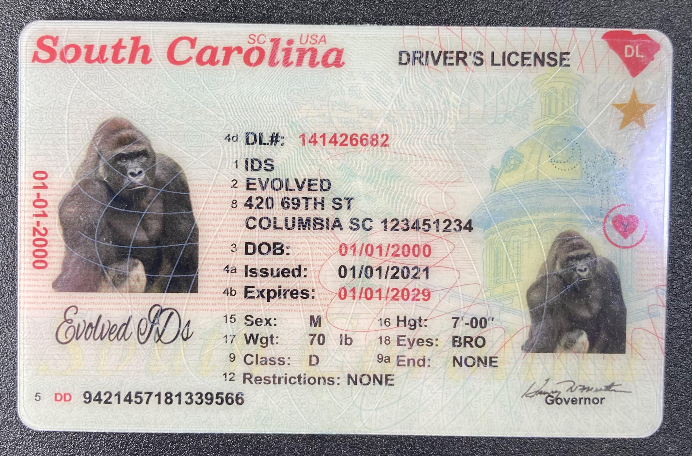 South Carolina (New Version) Fake ID Front