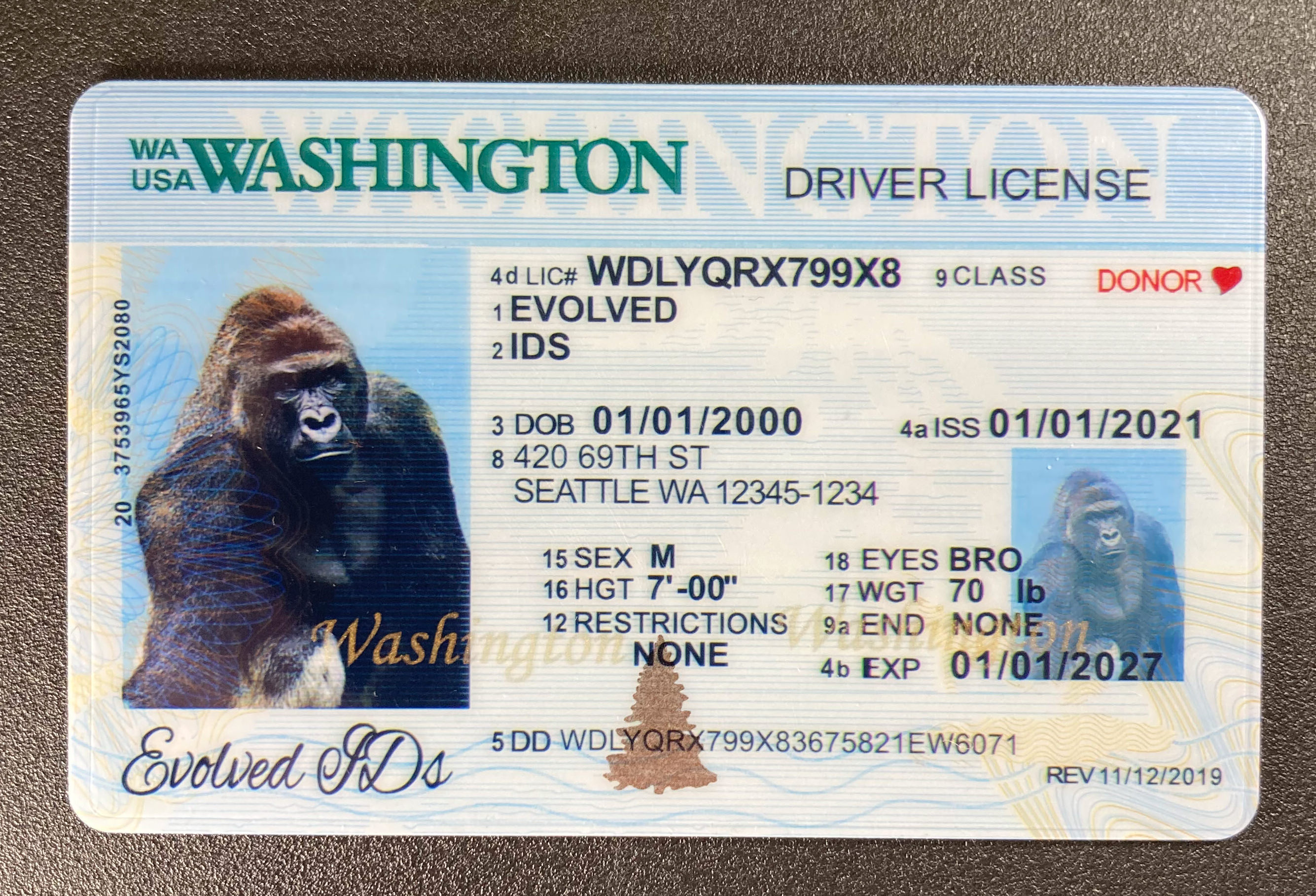 Washington (Old Version) Fake ID Front